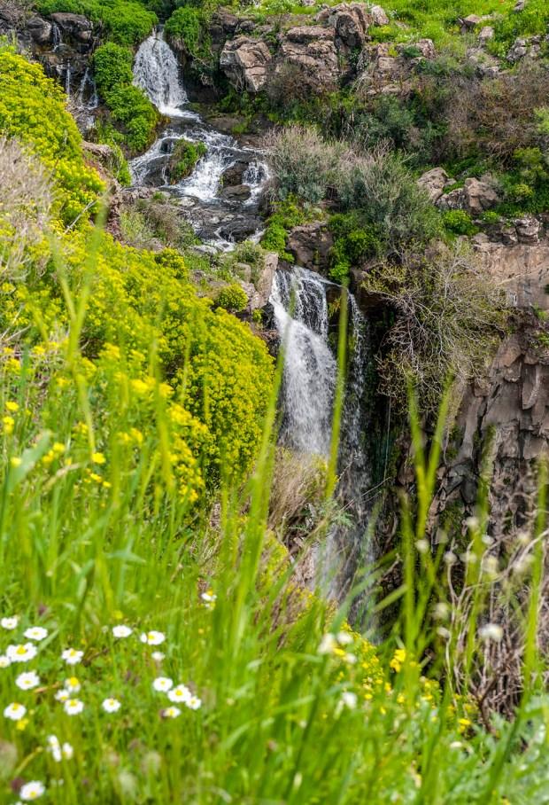 Водопад Гамла