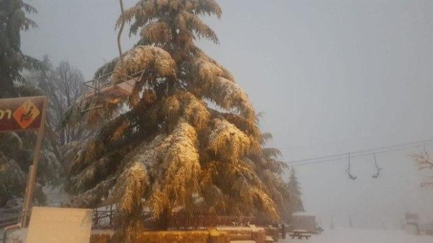 Снег на Хермоне