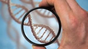 Does the corona virus change DNA?
