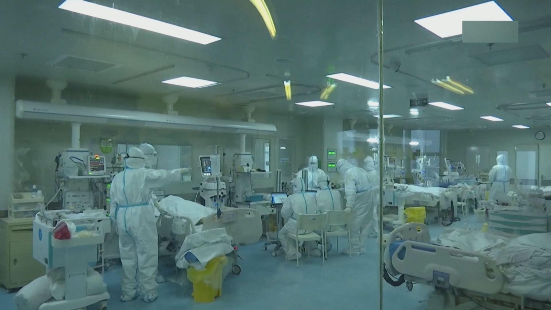 Video: Ya son 56 los muertos por el coronavirus, y unos 2.000 los ...