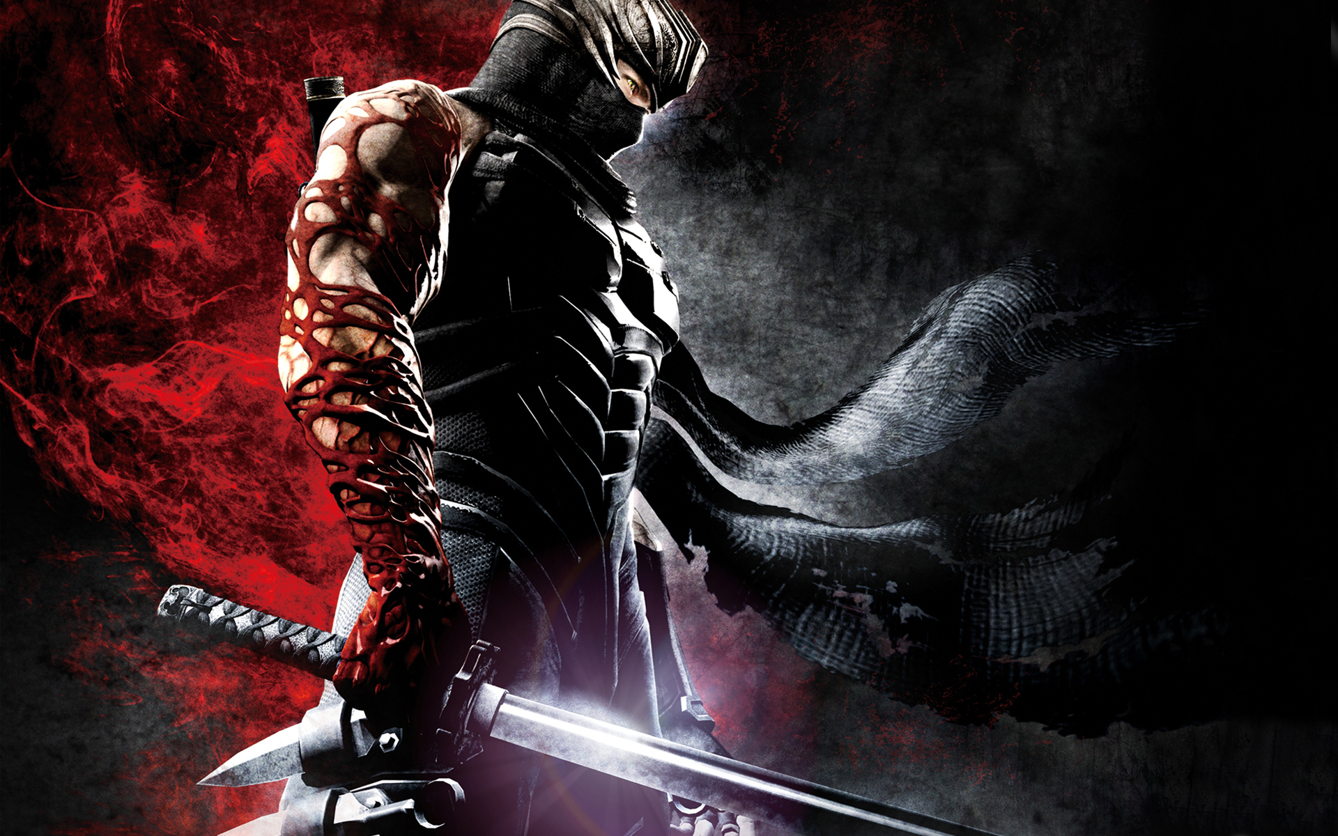 44 Ninja Gaiden HD Wallpapers Backgrounds Wallpaper Abyss Page 2