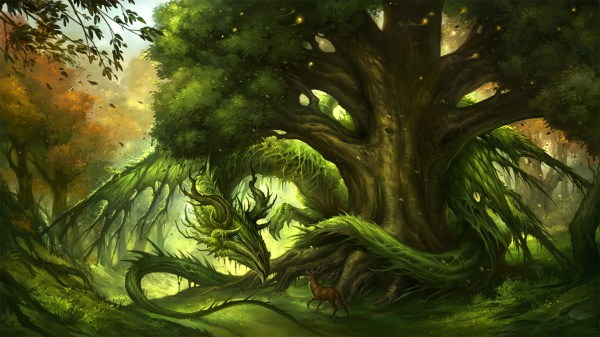 Guardian Of Forest Hd Wallpaper Background