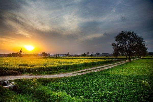 Farm Sunset Desktop Backgrounds Nature
