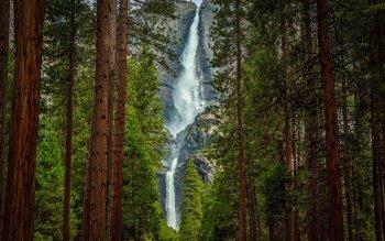 Fall Foliage Hd Wallpaper 83 Yosemite National Park Hd Wallpapers Background