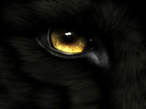 Eye Hd Wallpapers Background - Wallpaper Abyss
