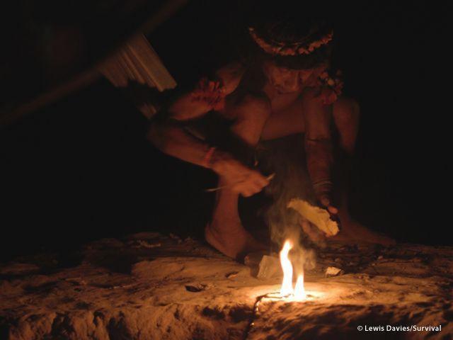 Per illuminare le case di notte, gli Awá bruciano una resina che estraggono dal maçaranduba. Sono la tribù più minacciata del mondo (a cura di Joanna Eede ? www.survival.it)