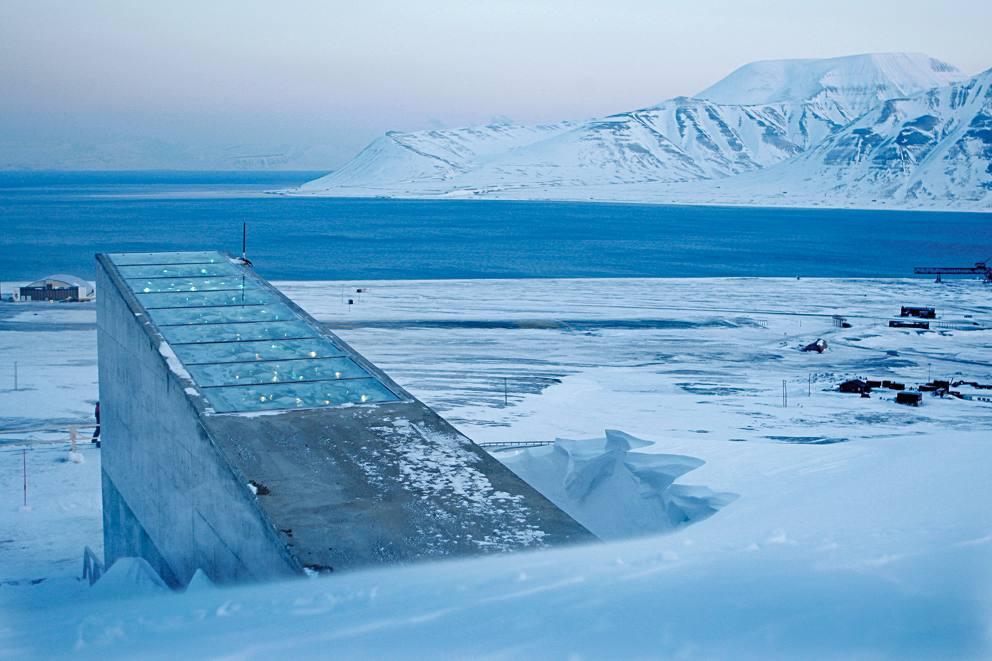 La banca mondiale dei semi delle isole Svalbard  Corriereit