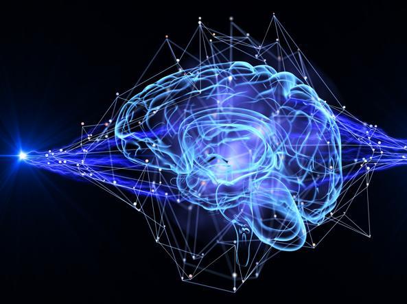 Negli anziani la pressione alta può essere legata a danni al cervello  Corriereit