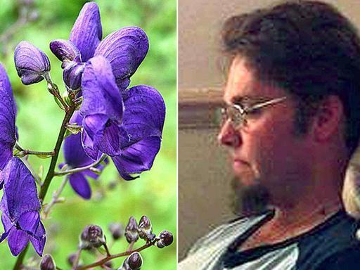 Giardiniere 33enne muore al lavoro Ucciso da una pianta velenosa  Corriereit