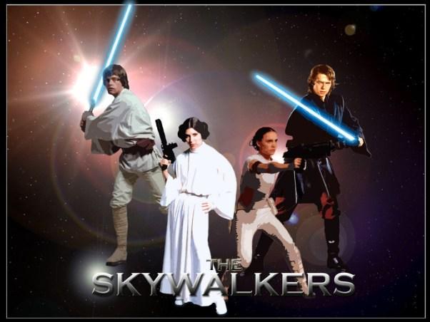 Image result for skywalkers