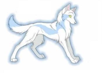 wolf anime wolves drawings wings female fan fanpop snow cute pups ice fanart draw animation she power light