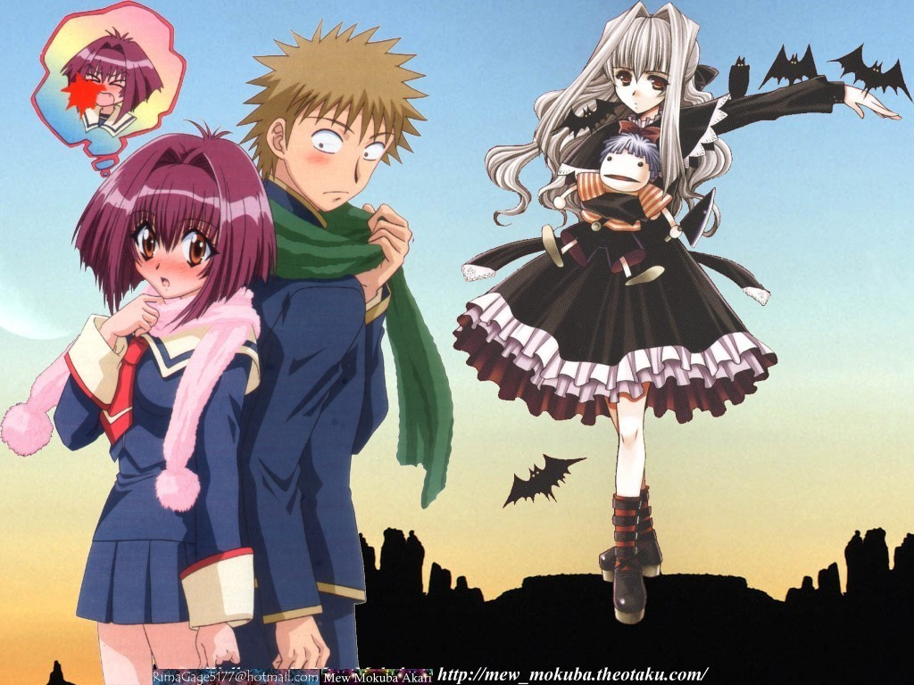Anime Wednesdays What I Thought About Karin Chibi Vampire
