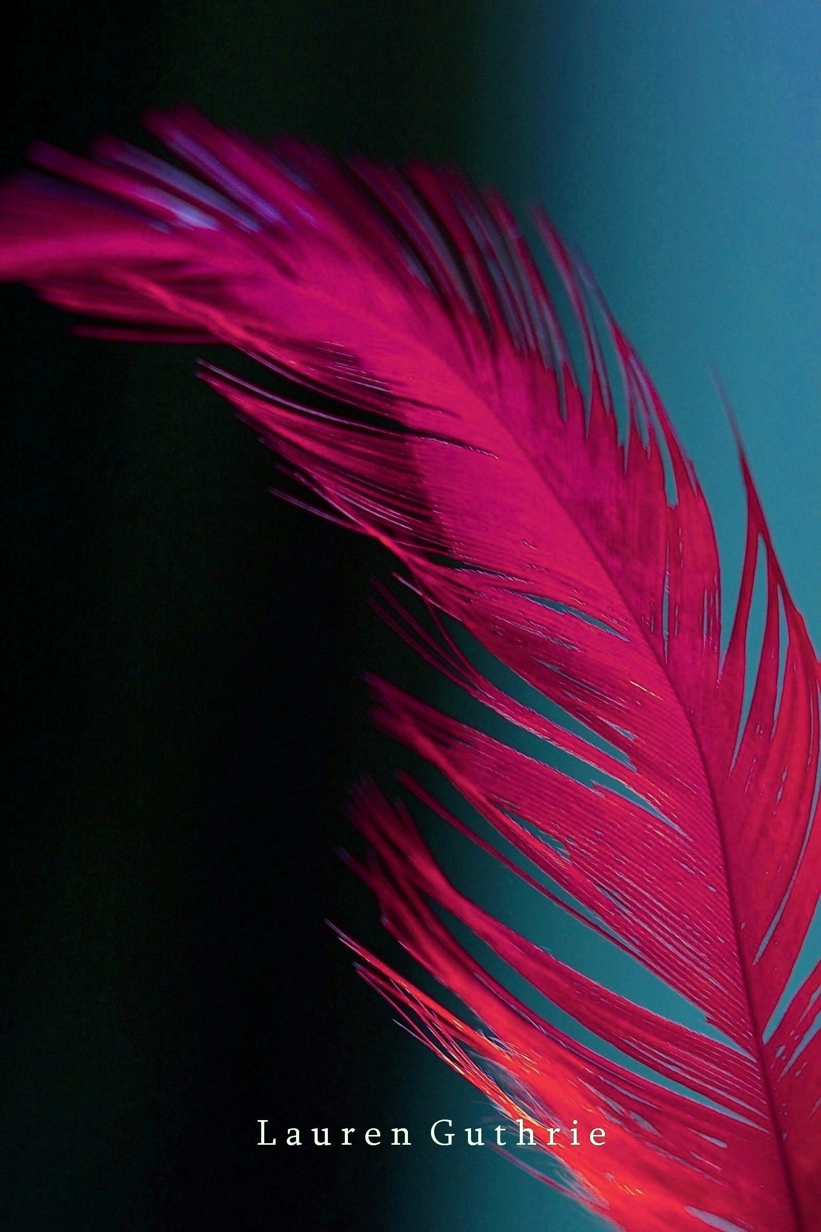 Decent Wallpapers For Girls Feather Photography Photo 9609222 Fanpop
