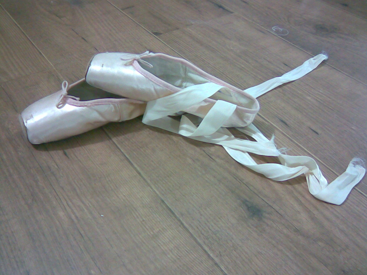My Pointe Shoes  Photography Photo 2673937  Fanpop