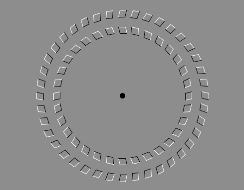 Puzzles and Brain Teasers images Optical Illusion