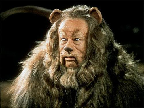 Image result for cowardly lion wizard of oz