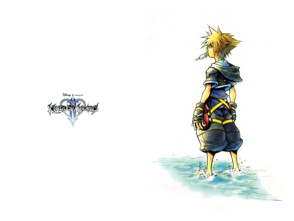 Falling In Reverse Desktop Wallpaper Kh2 Kingdom Hearts 2 Wallpaper 4508416 Fanpop