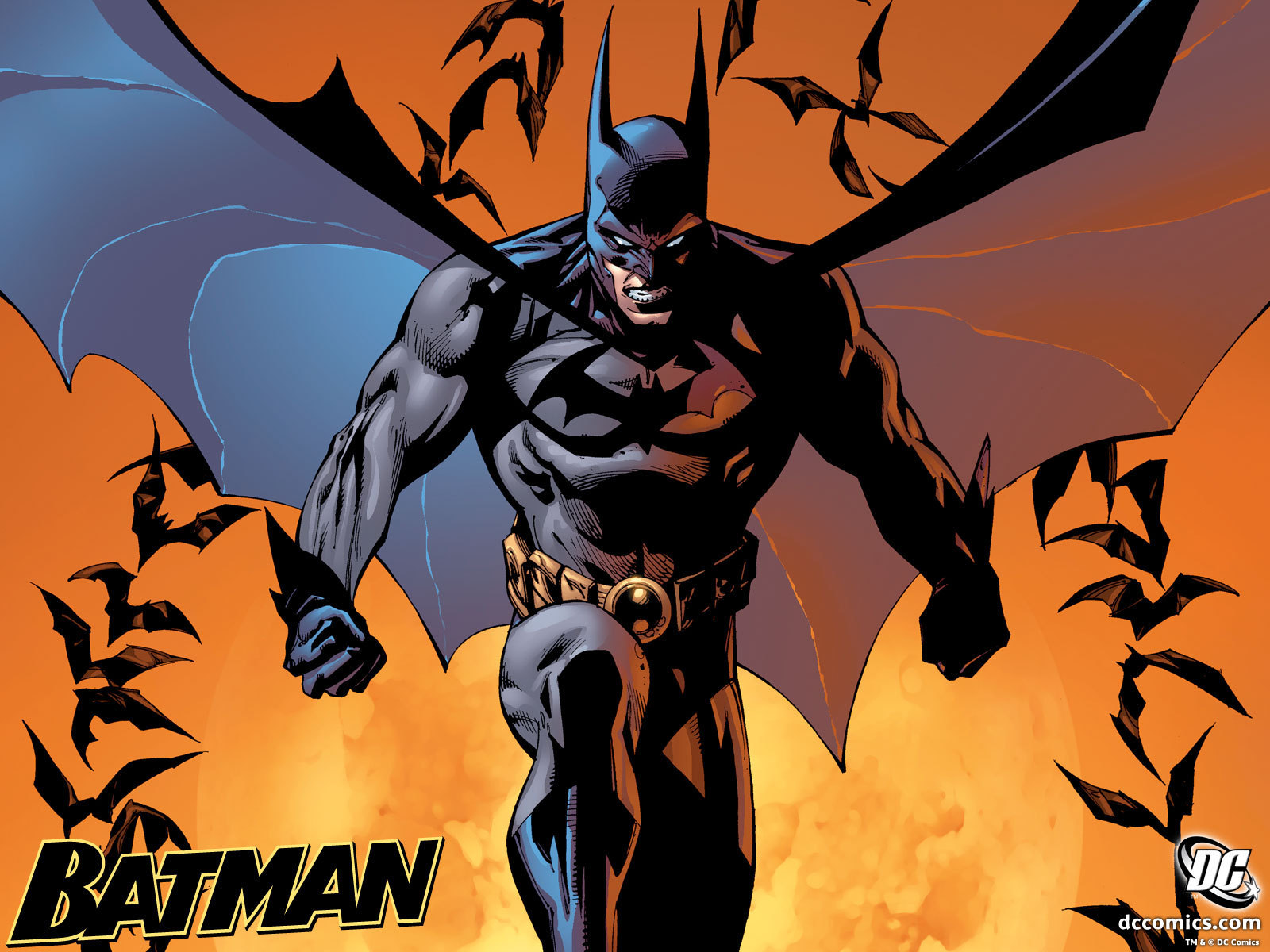 Batman #687  Batman Wallpaper (6637178) Fanpop