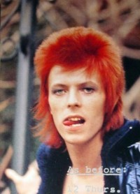 What kind of hair style is the best style for Bowie? Poll ...
