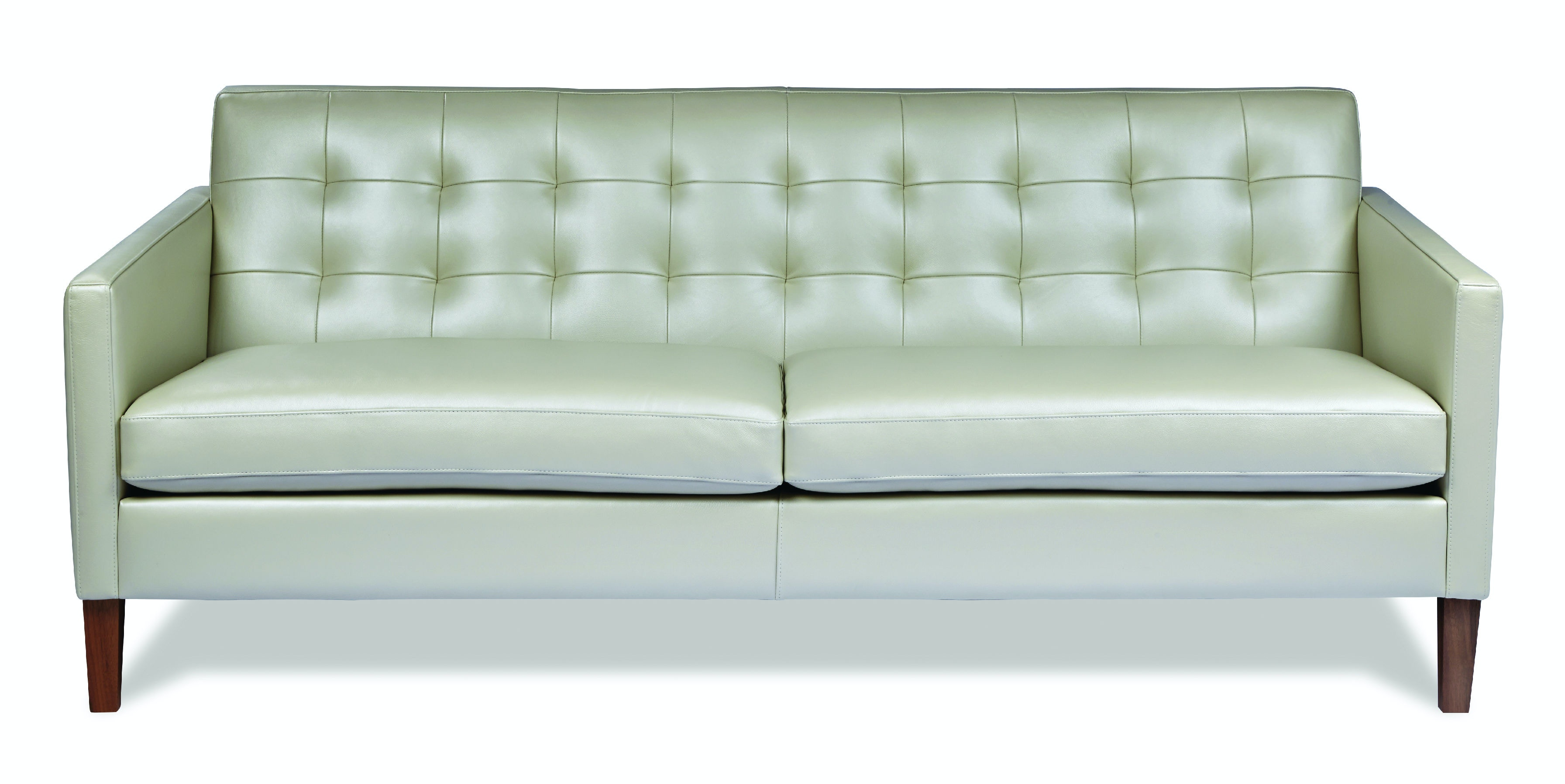 cloud track arm leather two seat cushion sofa best sofas for back and neck support santa clara furniture eastern american ain so2 st