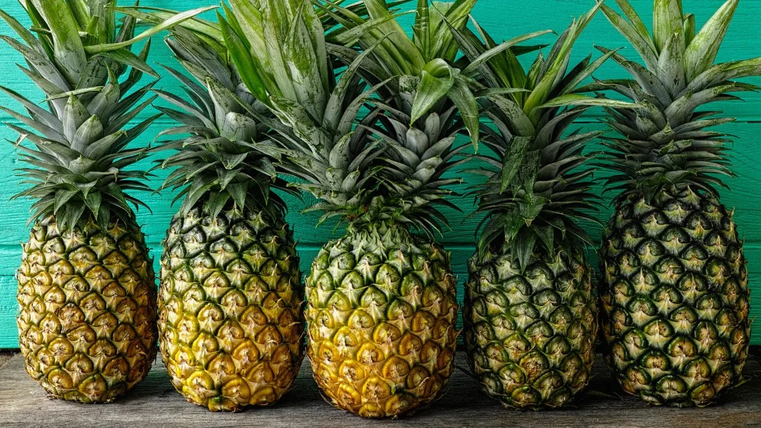 why is a pineapple