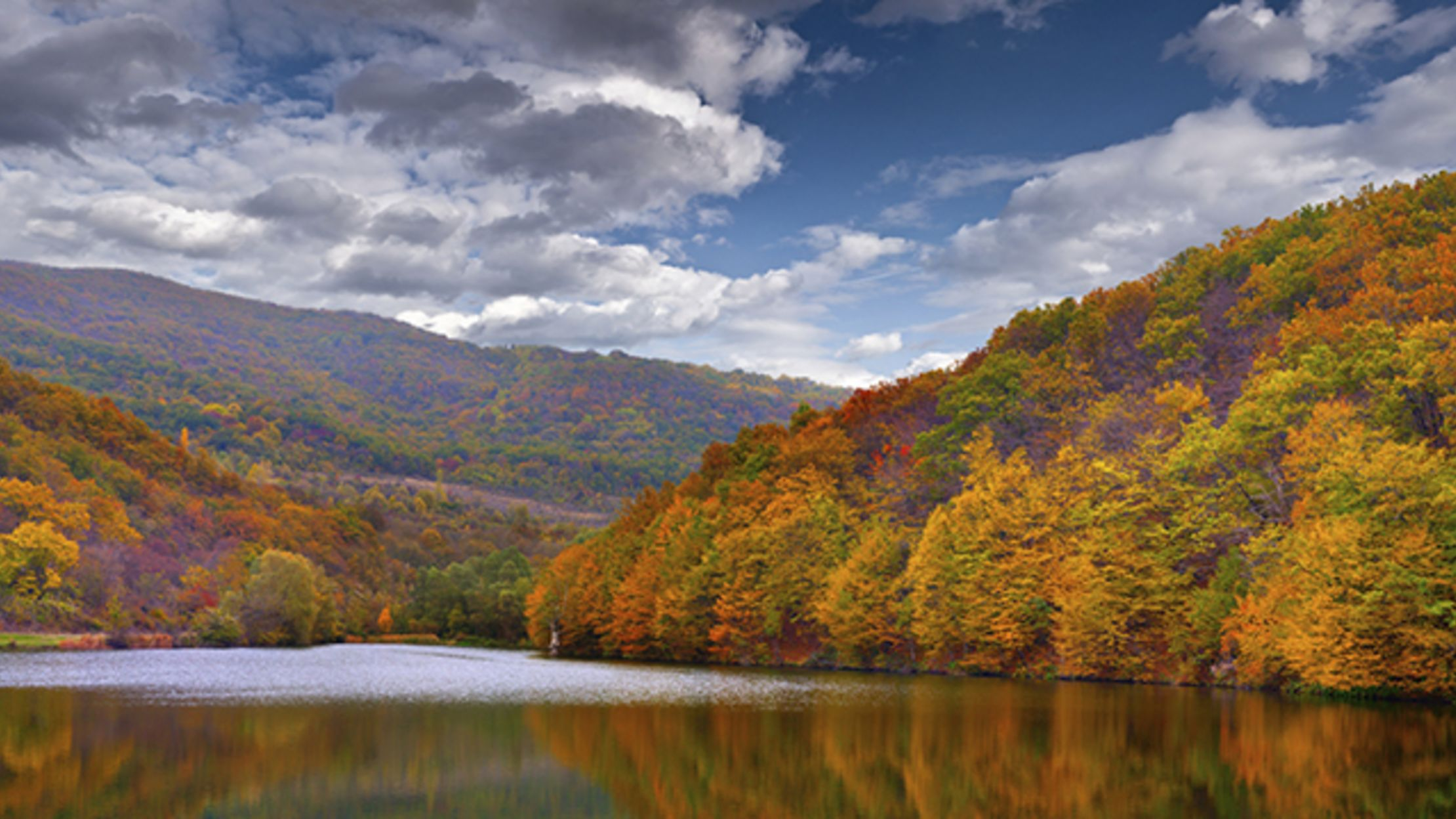 Fall In The Mountains Wallpaper 9 Trees With Spectacular Fall Foliage Mental Floss