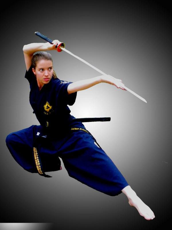 Martial Arts Styles - Worldofjaymz Wiki