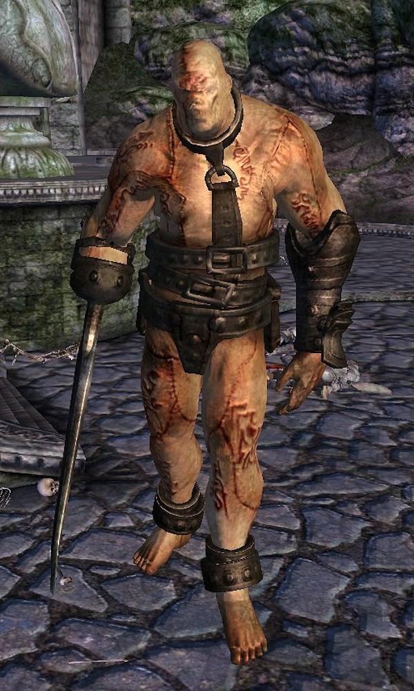 Gatekeeper Shivering Isles  The Elder Scrolls Wiki