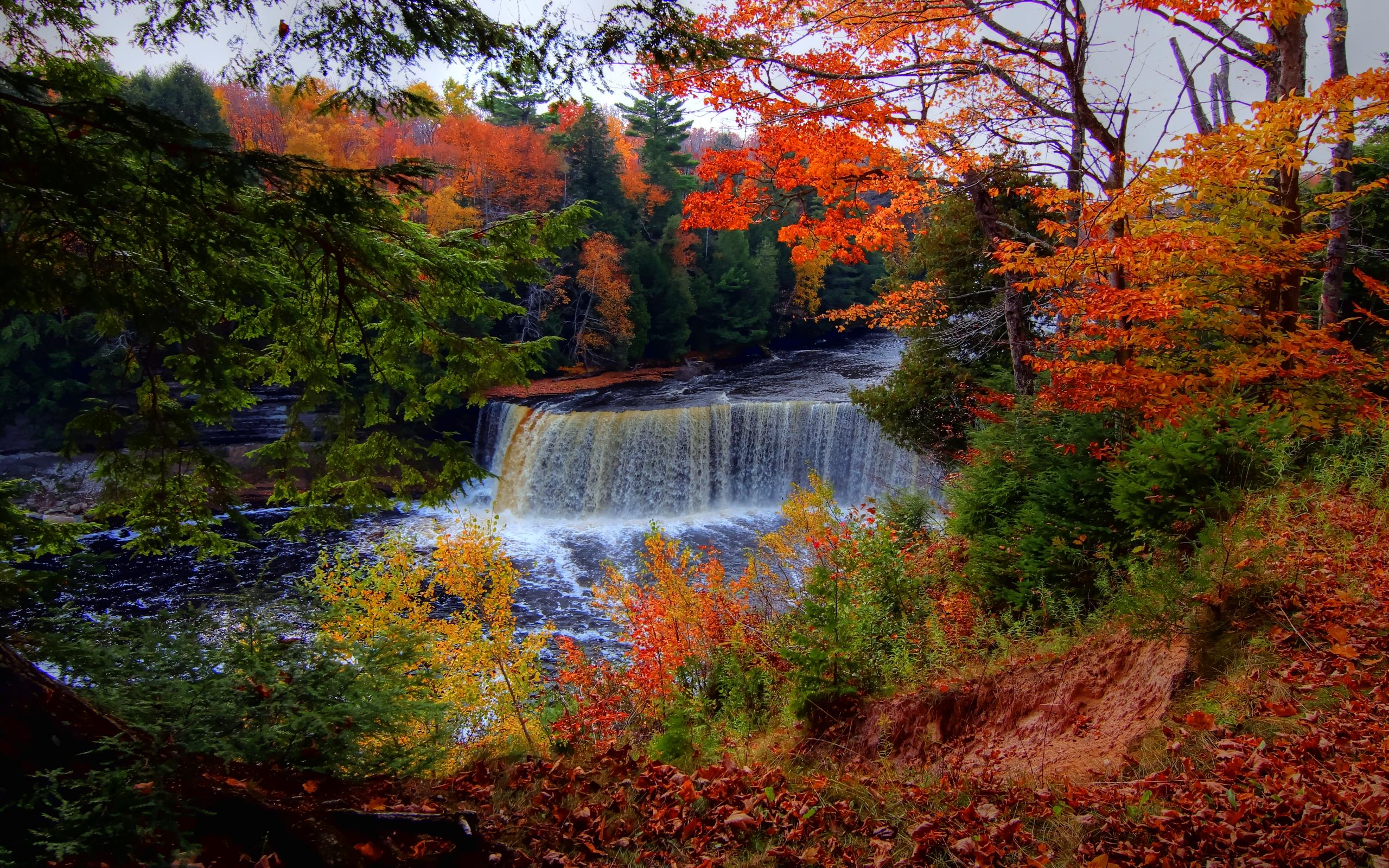 Tahquamenon Falls Michigan Winter Wallpaper Waterfall Hd Wallpaper Background Image 2560x1600 Id