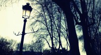 Lamp Post Full HD Wallpaper and Background Image