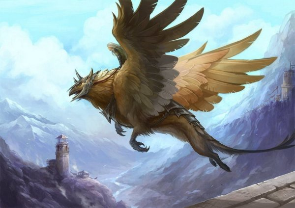 Griffin Hd Wallpaper Background 1920x1357 Id