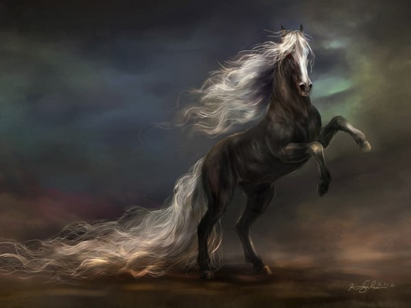 1282 Horse Hd Wallpapers Background - Wallpaper Abyss