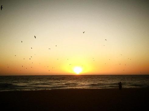 Biển Melbourne ngày Tết