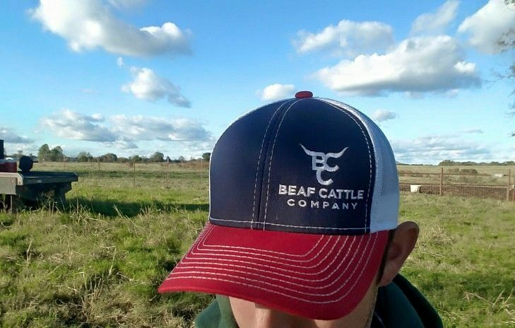 Keyword Red White And Blue Cap Beaf Cattle Company
