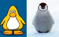 A typical Club Penguin penguin compared side by side with a real one.