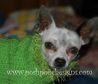 Ravelry: Fancy Trim Dog Sweater pattern by Sara Sach