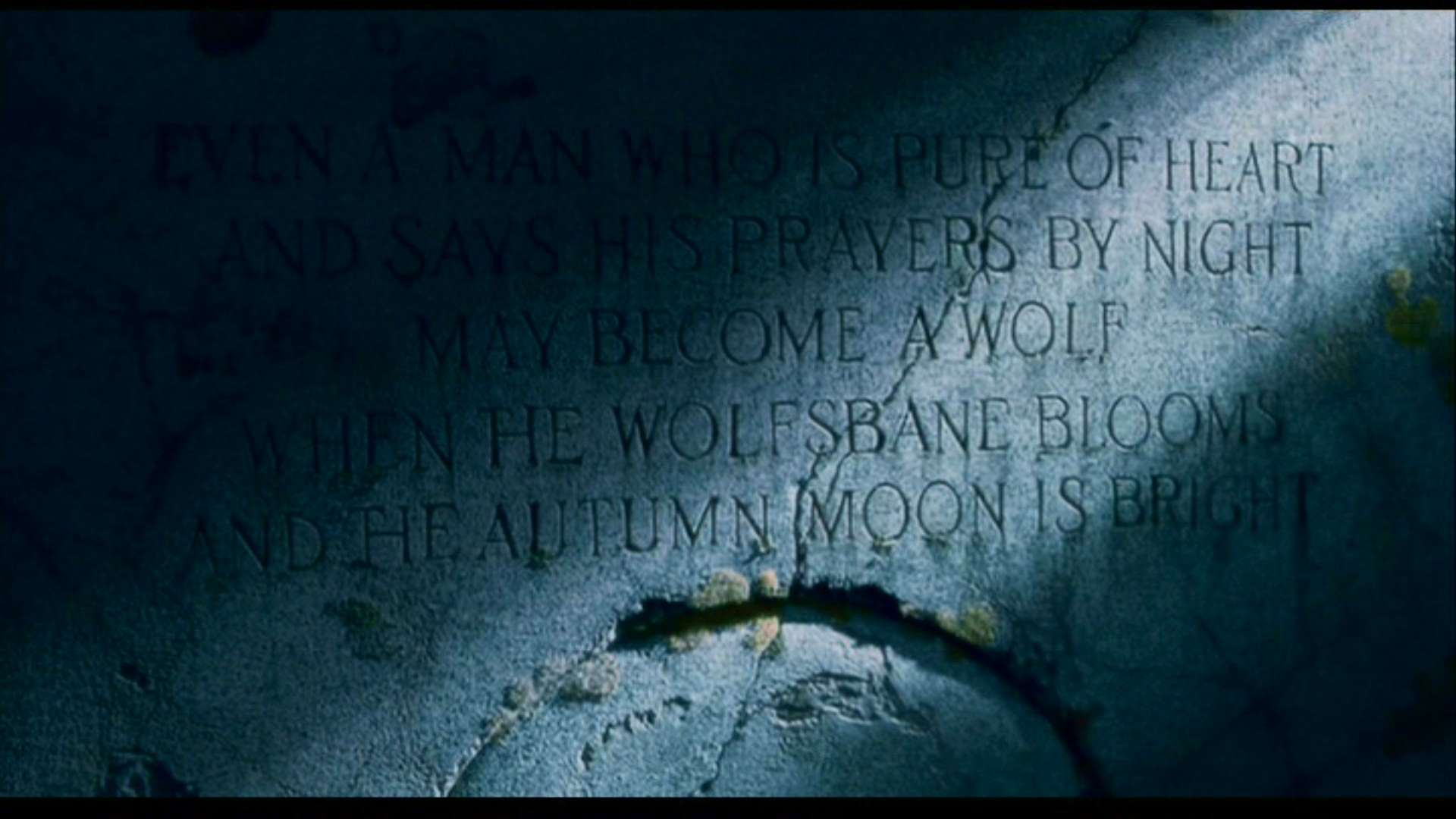 Create Iphone Wallpaper Quote The Wolfman Hd Wallpaper Background Image 1920x1080