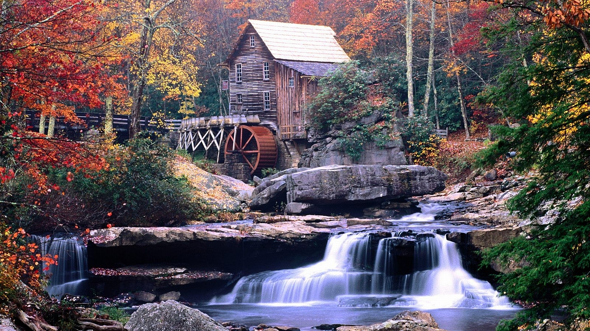 Tree With Leaves Falling Wallpaper Watermill Hd Wallpaper Background Image 1920x1080 Id