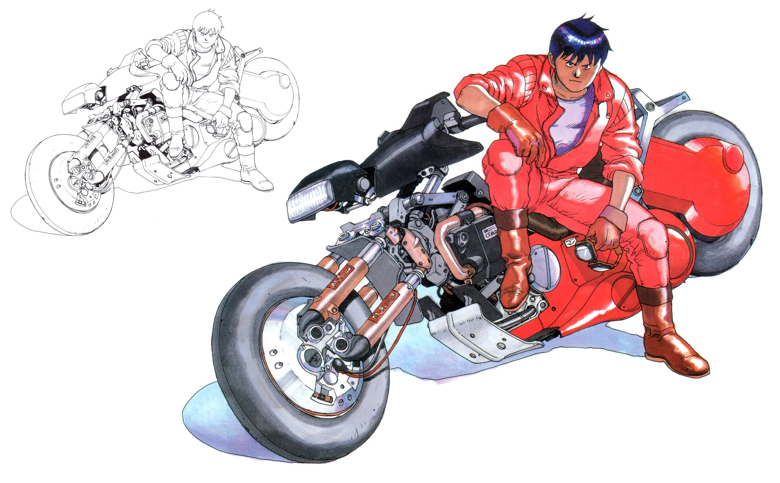Akira Full HD Wallpaper and Background Image | 2560x1585 | ID:16916