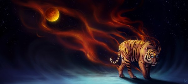 Cool Animal Backgrounds Tiger Fire