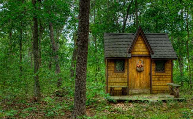 Tiny House In The Forest Hd Wallpaper Background Image
