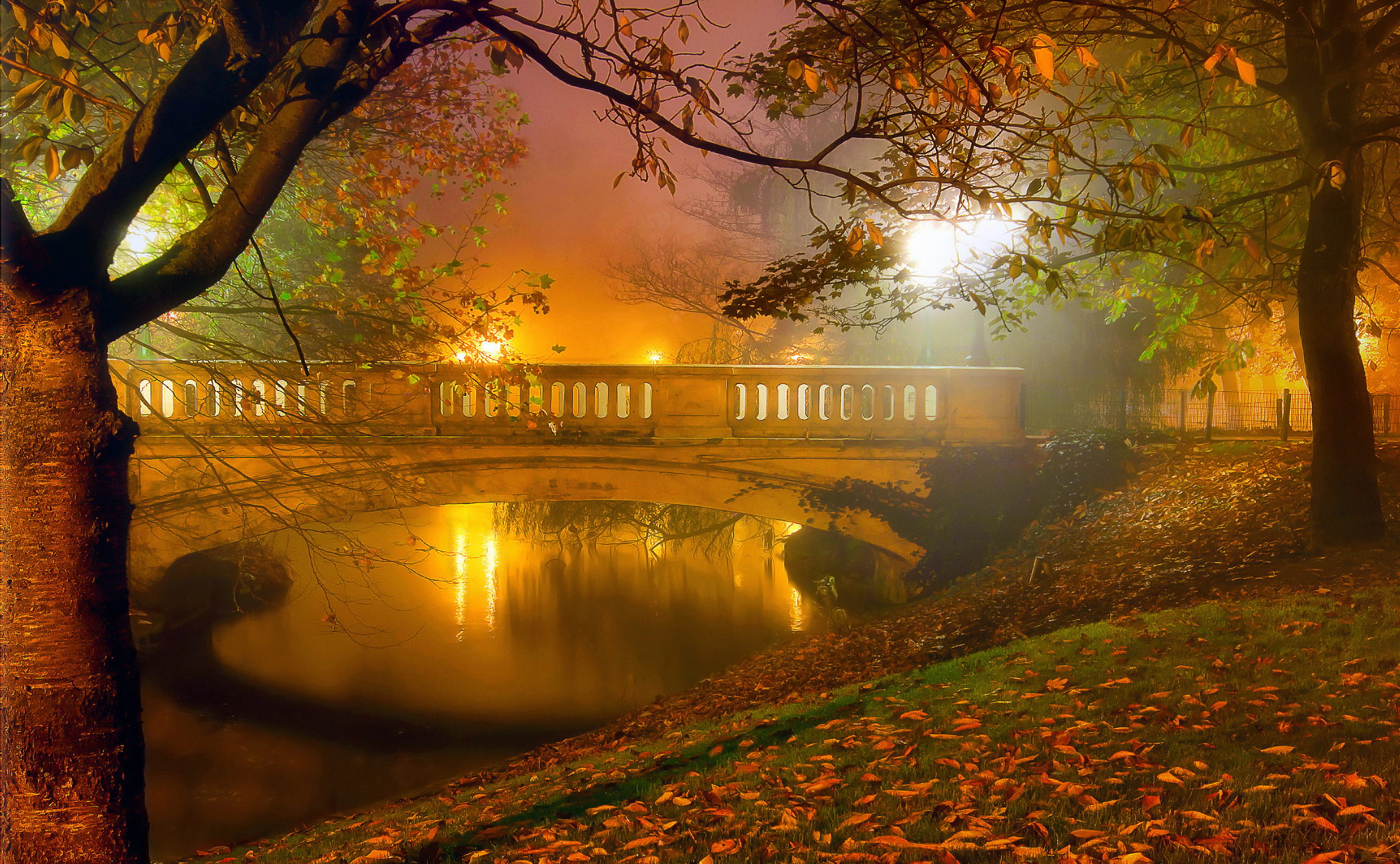 Fall Hd Wallpapers 1080p Widescreen Misty Night In Autumn Park Hd Wallpaper Background Image