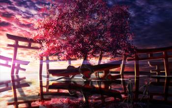 190 Sakura Hd Wallpapers Background Images