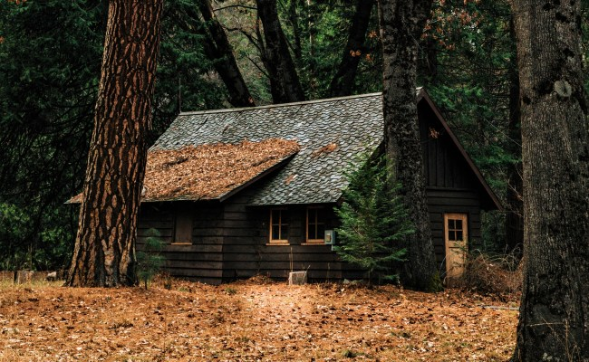 Small House In The Forest 4k Ultra Hd Wallpaper