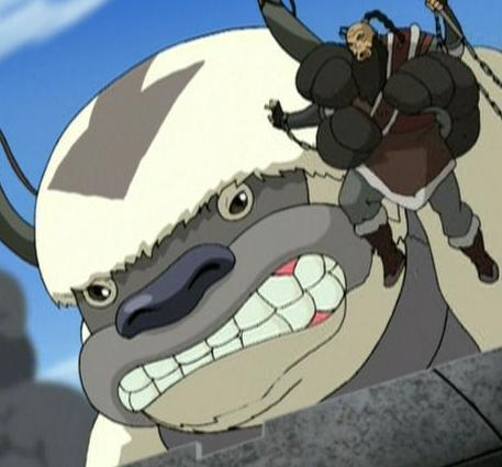 Avatar The Last Airbender Images Appa Wallpaper And Background