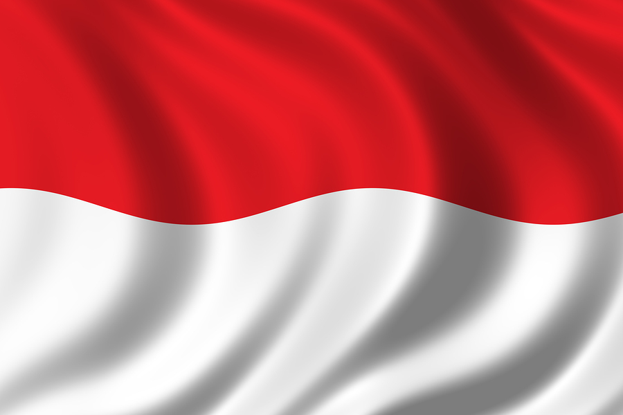 flag indonesia photo 16357998