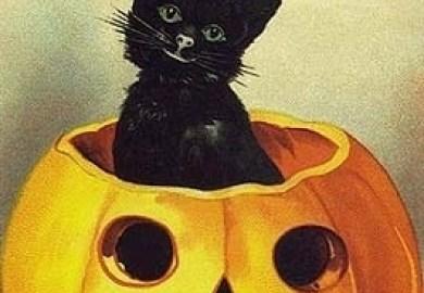 Vintage Halloween Cards Vintage Fan Art Fanpop