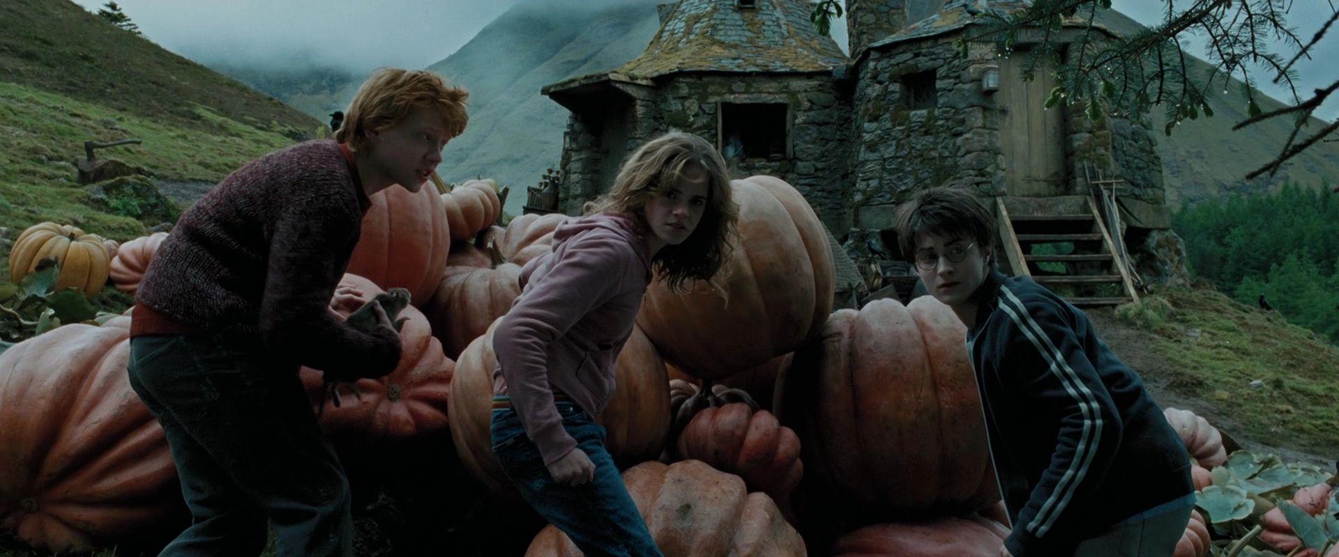 Image result for harry potter and the prisoner of azkaban