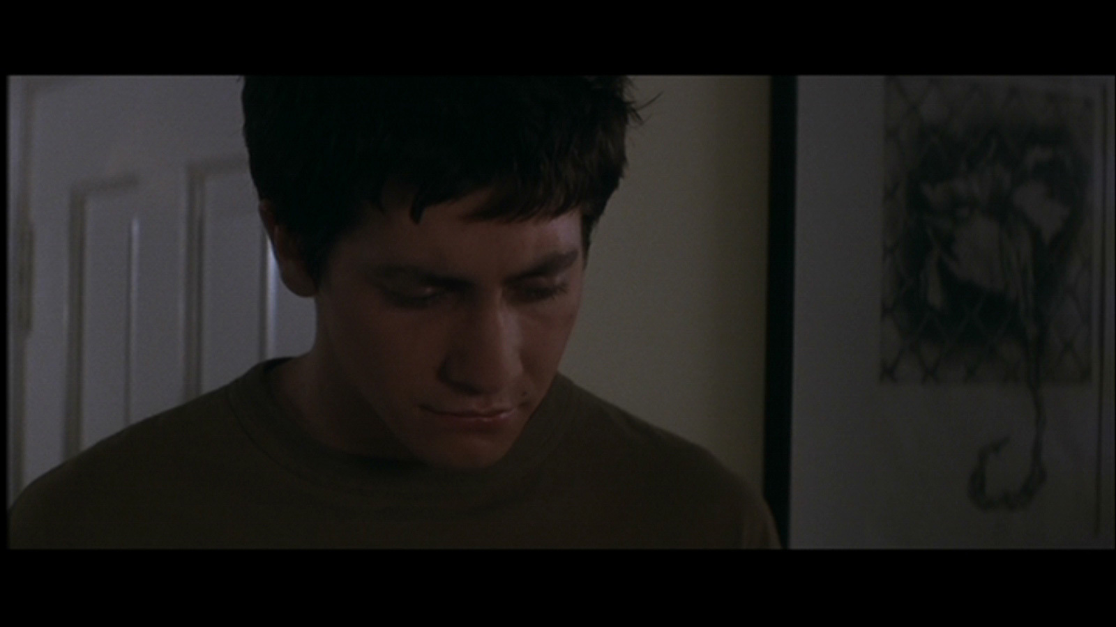 donnie darko detailed summary essay View and download donnie darko essays examples also discover topics, titles, outlines, thesis statements, and conclusions for your donnie darko essay  semiotic analysis of 'donnie darko' view full essay  52997947 the end of the film also shows different scenarios indicating that since donnie died, the teacher got to keep teaching, the.