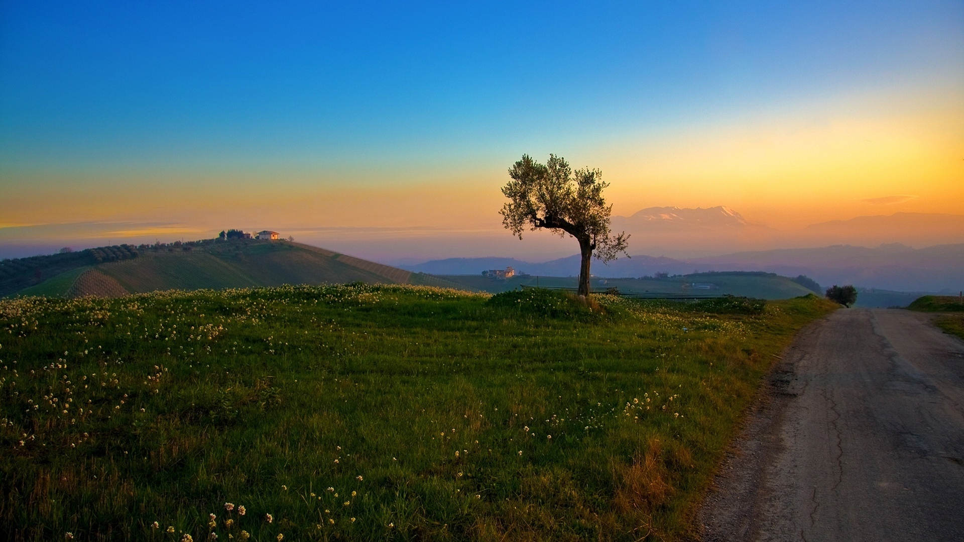 Scenery Pics images Spring and summer scenery HD wallpaper and background photos 22175433
